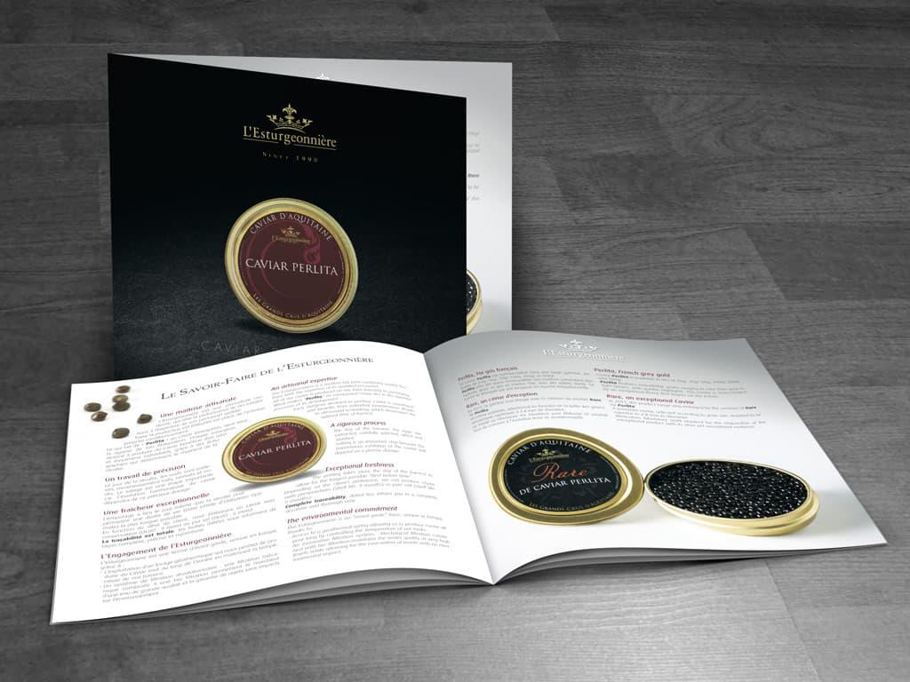 L'ESTURGEONNIÈRE : brochure de luxe - français/anglais - quadri + dorure à chaud